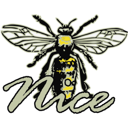 Bee Nice Kids T-Shirt