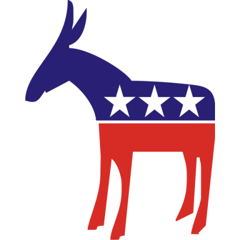 Democratic Donkey Kids T-Shirt