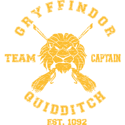Gryffindor Quidditch Team Kids T-Shirt