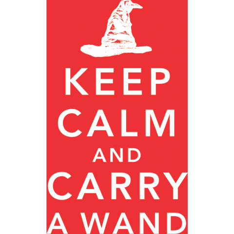 Keep Calm & Carry A Wand Kids T-Shirt