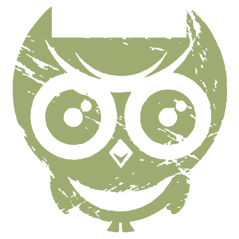 The Wise, Cheerful Owl Kids T-Shirt